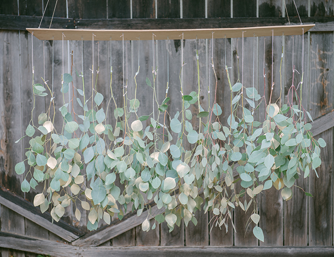 diy-eucalyptus-and-magnolia-christmas-decorations6