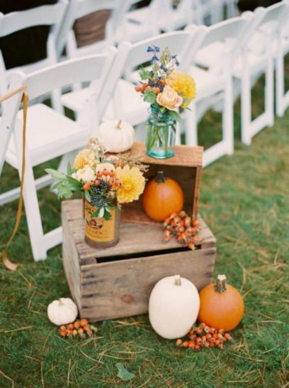 fall_pumpkins-1